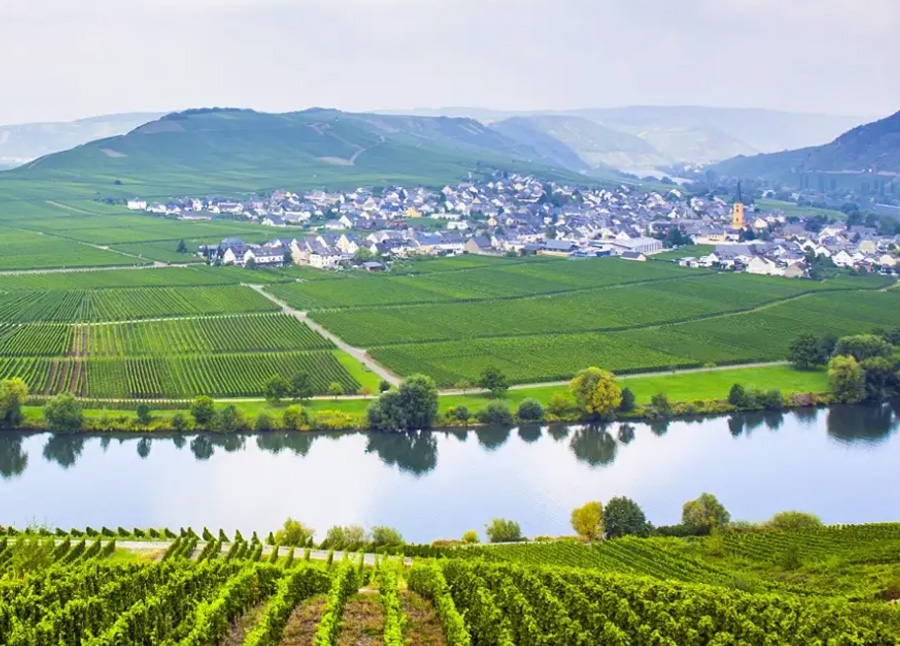 The Valley of the romantic Rhine, the Moselle and the Main    CroisiEurope Cruises